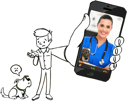 Telehealth for Pet Owners & Veterinarians
